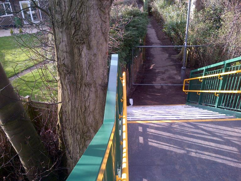 Bridge stairs 22mm from the existing tree !!!